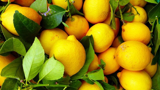 fruit-3287620_640